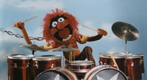 animal-drumming